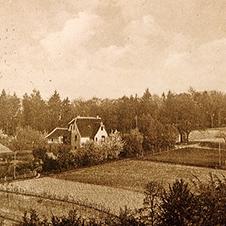 Baumschule Leven 1912