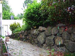 Natursteinmauer mit Pflanzen